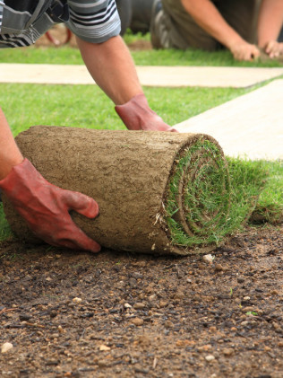 Sod Installations